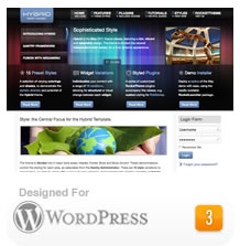 2011 WordPress Themes